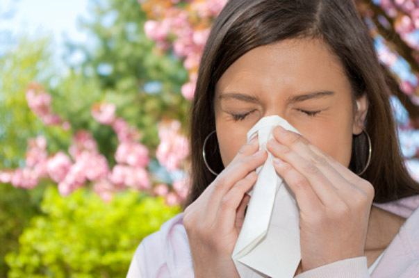 Image result for Coping With Seasonal Allergies