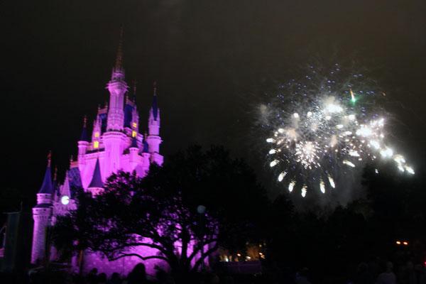 Gorgeous fireworks