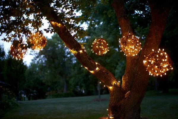 grapevine-lights