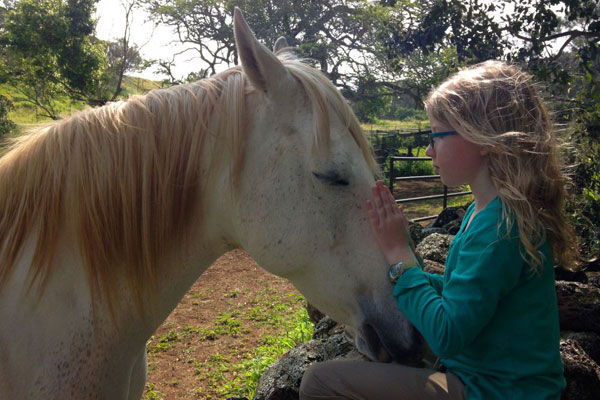 girl-petting-horse